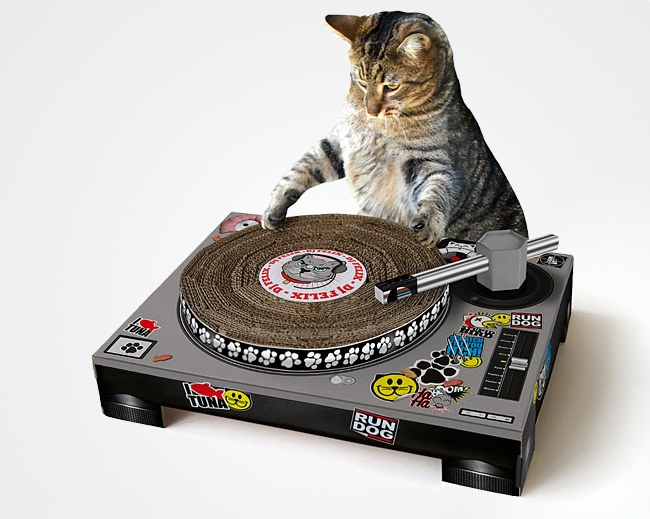 cat_scratch_dj