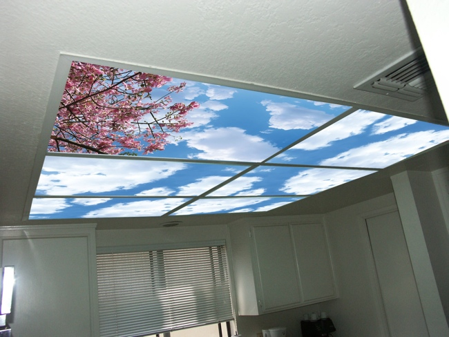 Skypanels turn your ceiling light panels into an image of the sky mozeypictures Images