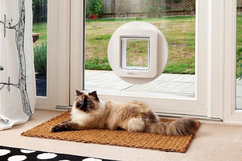 sureflap cat flap microchip
