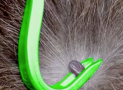 The Tick Twister Gets Rid of Your Ticks Quickly and Pain-Free