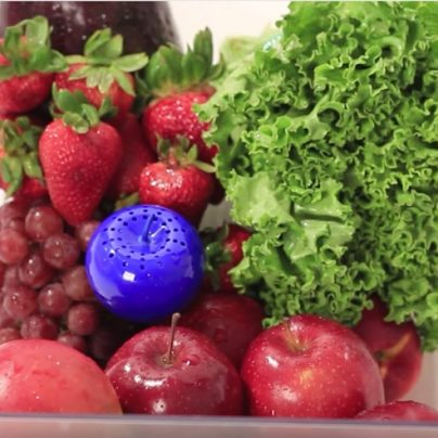The BluApple Prolongs The Life Of Your Produce By Absorbing Ethylene Gas