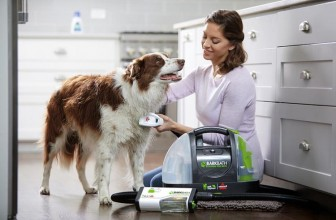 The BarkBath Is a Shower and a Vacuum Rolled into One