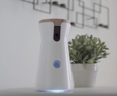 The Furbo Dog Camera Lets You Take Pictures, Give Treats and Talk to Your Dog Away from Home