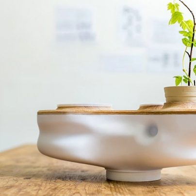 Reduce Your Household Waste with This Mini Ecosystem