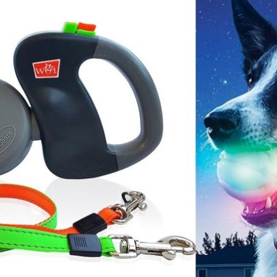 10 Of The Coolest Tech Gadgets You'll Want For Your Pet!