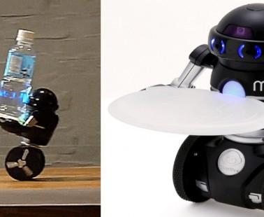 Omnibot, The Auto Balancing Japanese Robot
