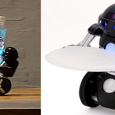 Omnibot, The Auto Balancing Japanese Robot