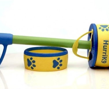 This Simple Toy is Sure to Become Your Dog's New Favorite!