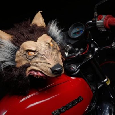 Insanity Wolf Motorcycle Helmet
