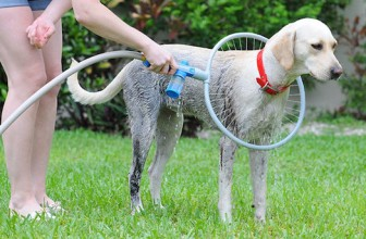 The Woof Washer Will Wow Your Dirty Dogs